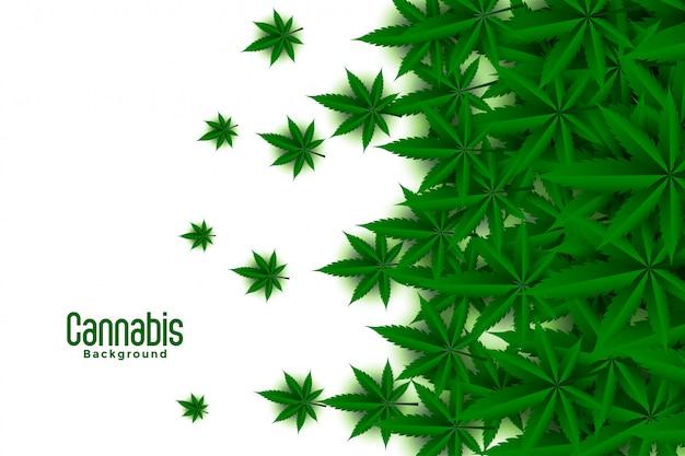 Groene cannabis verlaat witte achtergrond Gratis Vector