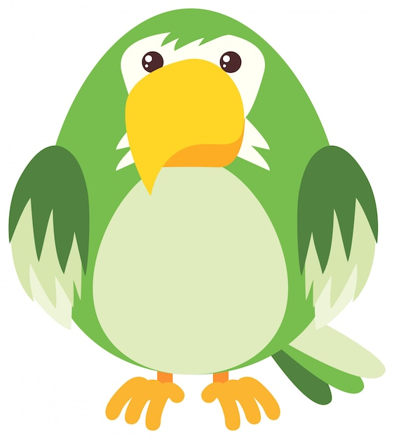 Groene papegaai op witte achtergrond Gratis Vector