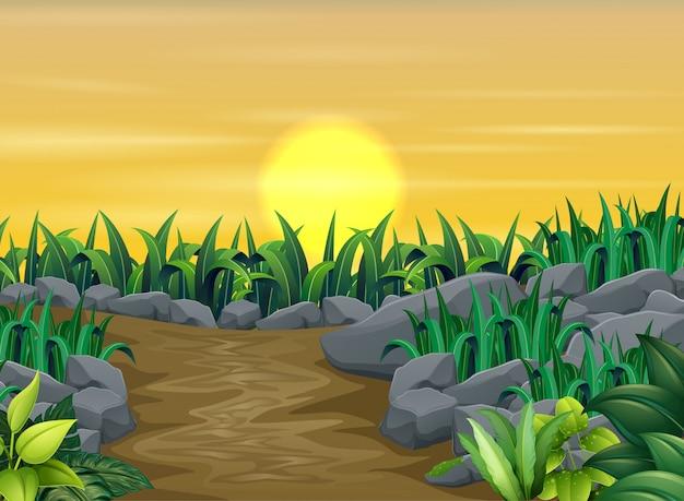 Groene planten met zonsondergang landschap Premium Vector