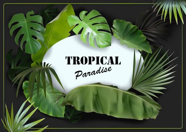 Groene tropische bladeren achtergrond met witte ovale ruimte Premium Vector