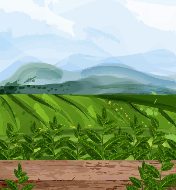 Groene velden aquarel achtergrond Premium Vector