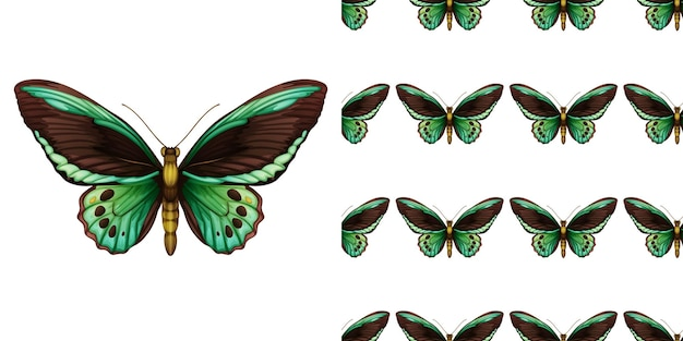 Groene vlinder en naadloos Gratis Vector
