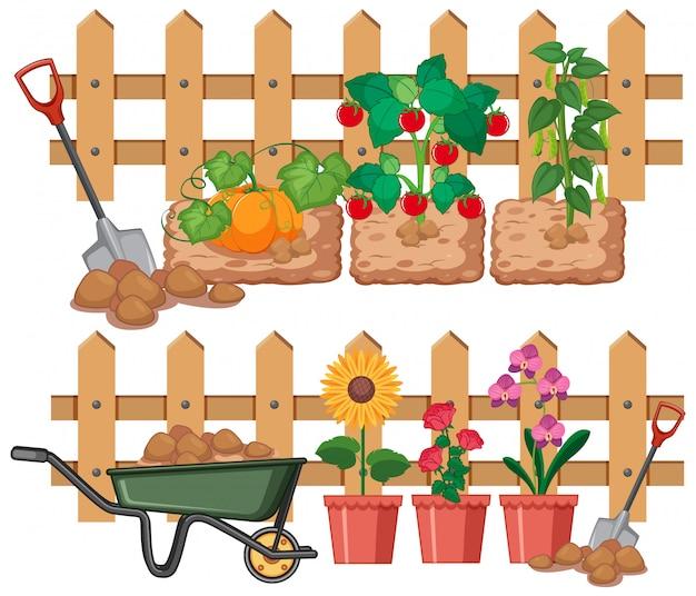 Groenten en bloemen groeien in de tuin Gratis Vector