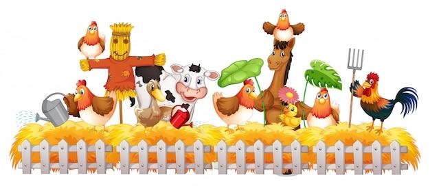 Groep huisdieren in een geïsoleerde boerderij Premium Vector