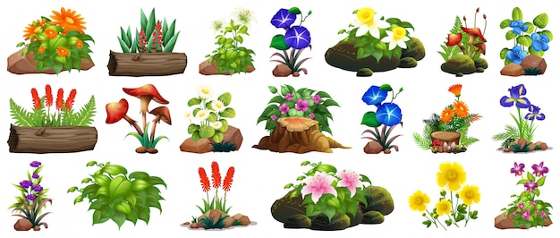 Grote et van kleurrijke bloemen op rotsen en hout Gratis Vector