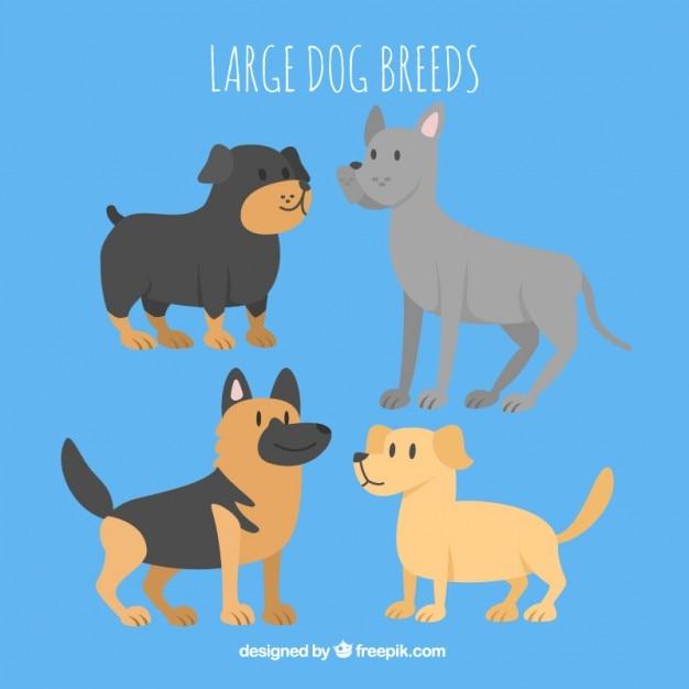 Grote hondenras collectie Gratis Vector