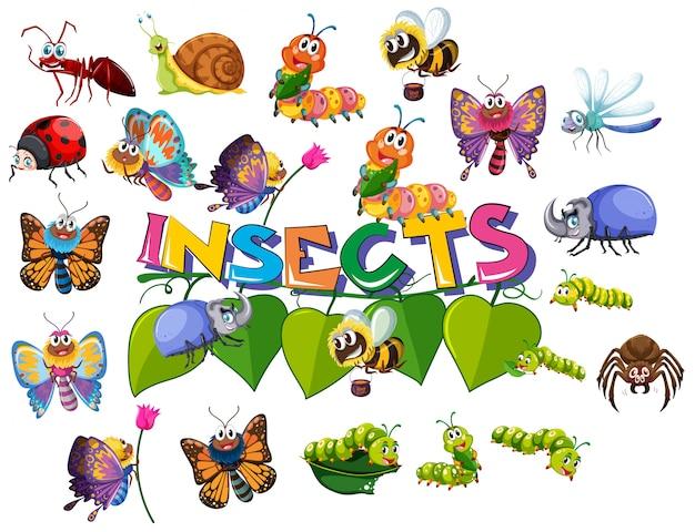 Grote insectenset Premium Vector