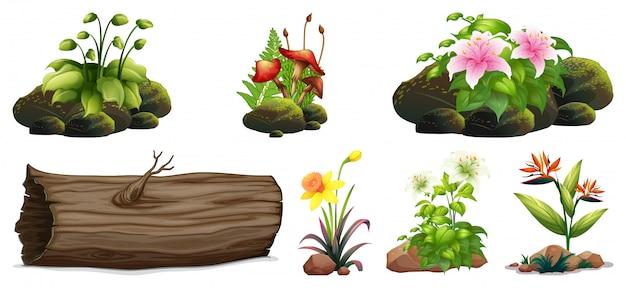Grote reeks kleurrijke bloemen op rotsen en hout Gratis Vector