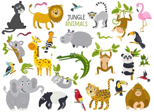 Grote set van schattige dieren uit de jungle Premium Vector