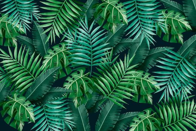 Grote tropische groene bladeren achtergrond Gratis Vector