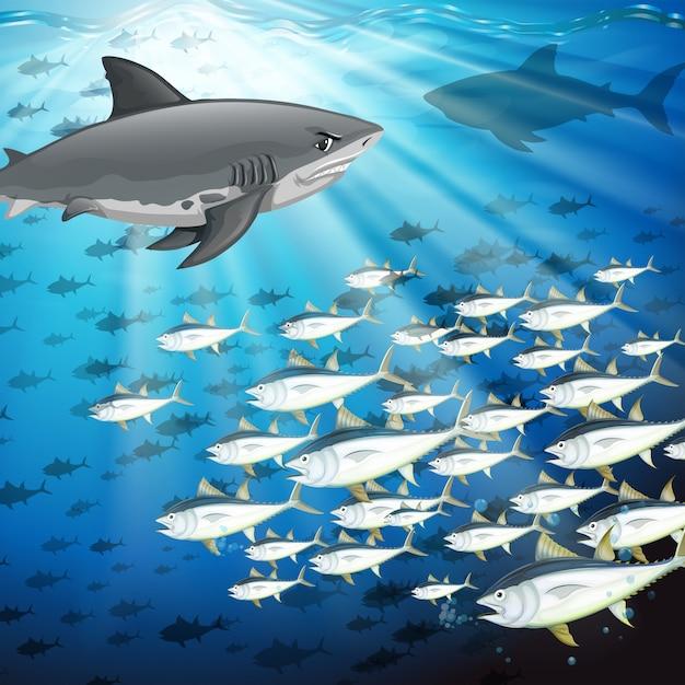 Haaien en vissen onder de oceaan Gratis Vector