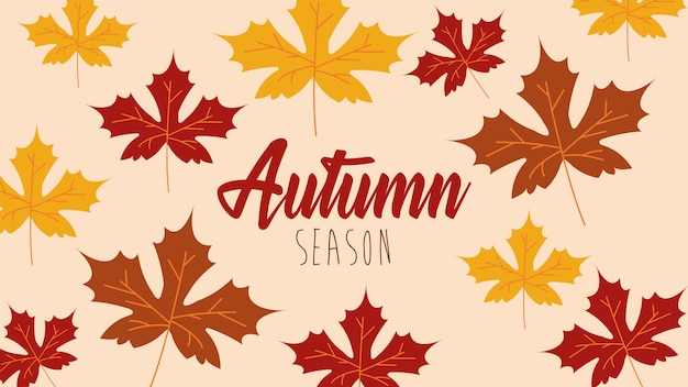 Hallo herfst seizoen esdoorn bladeren patroon Gratis Vector