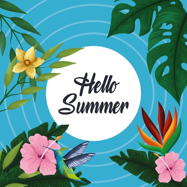 Hallo zomerkaart Gratis Vector