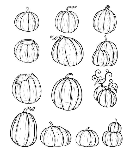 Hoe Maak Je Een Halloween Pompoen.Halloween Pompoen Met De Hand Tekening Set Van Pompoen In