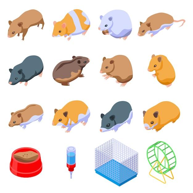 Hamster set, isometrische stijl Premium Vector