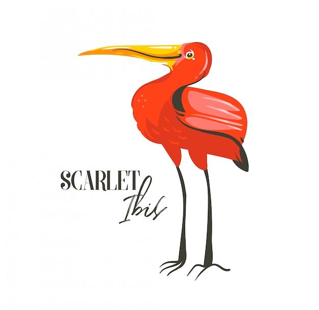 Hand getekend abstracte cartoon zomertijd grafische decoratie illustraties kunst met exotische tropische regenwoud scarlet ibis vogel op witte achtergrond Premium Vector
