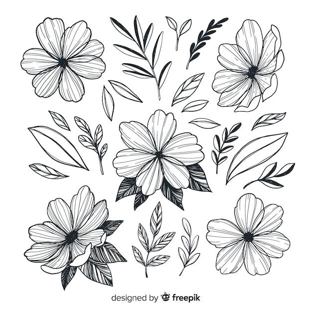 Hand getekend artistieke bloemen collectie Gratis Vector