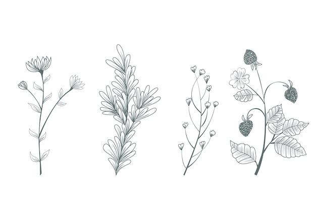 Hand getekend botanische wilde bloemen Gratis Vector