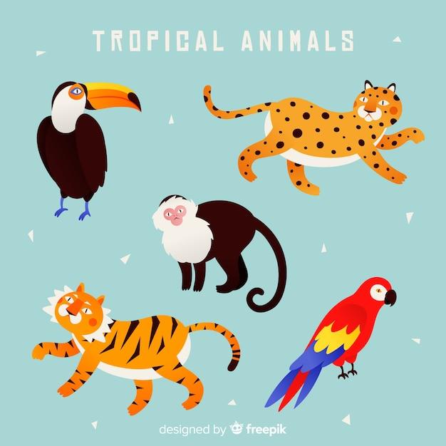 Hand getekend exotische dieren collectie Gratis Vector