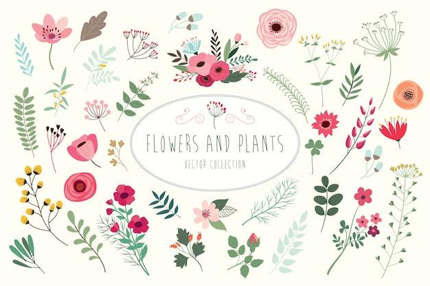 Hand getekend floral collectie met verschillende bloemen en bladeren. Premium Vector