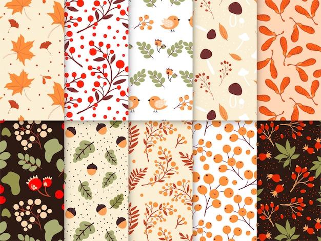 Hand getekend herfst patroon collectie Premium Vector