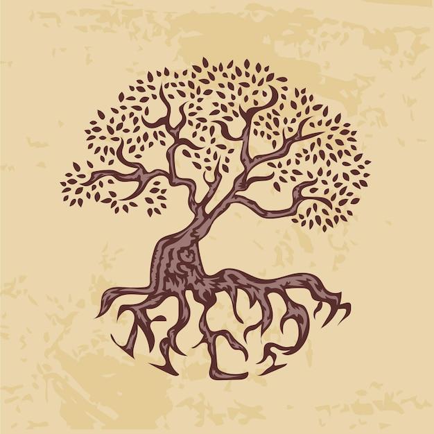 Hand getekend levensboom Gratis Vector