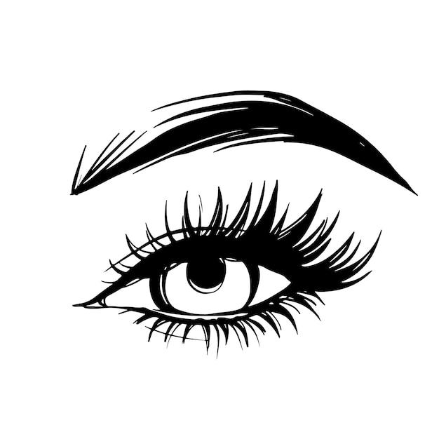 Hand getekend mooi vrouwelijk oog met lange zwarte wimpers en wenkbrauwen. Premium Vector