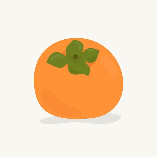 Hand getekend persimmon fruit illustratie Premium Vector