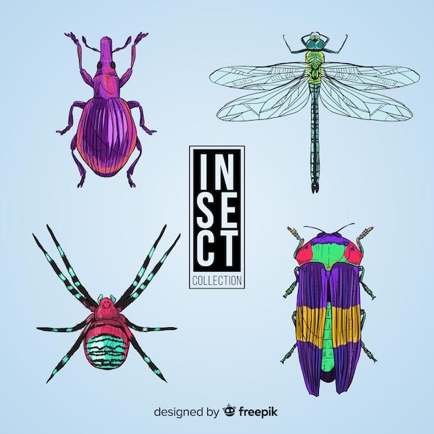 Hand getekend realistische insect pack Gratis Vector