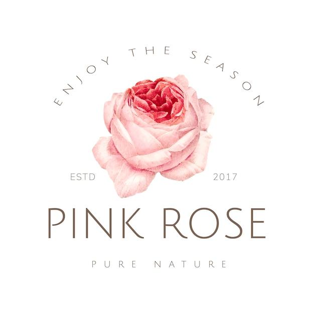 Hand getekend roze roos embleem Gratis Vector