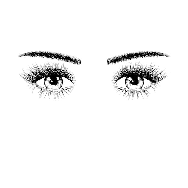 Hand getekend vrouwelijke ogen silhouet met wimpers en wenkbrauwen Premium Vector