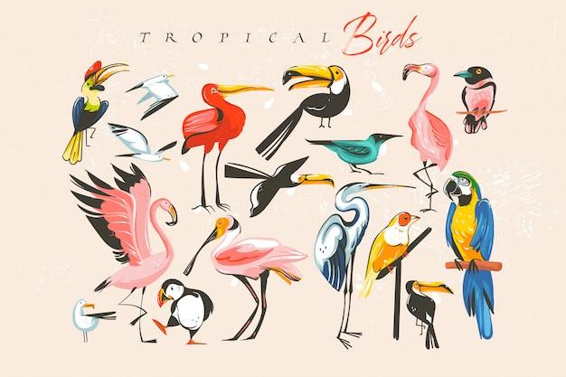 Hand getekende abstracte cartoon zomertijd leuke grote bundel groep collectie illustraties set met tropische exotische dierentuin of dieren in het wild vogels geïsoleerd op een witte achtergrond Premium Vector