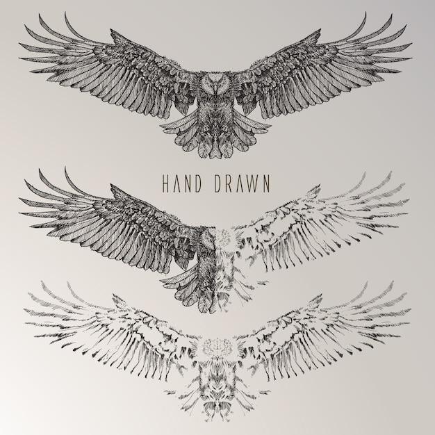 Hand getekende adelaar collectie Gratis Vector
