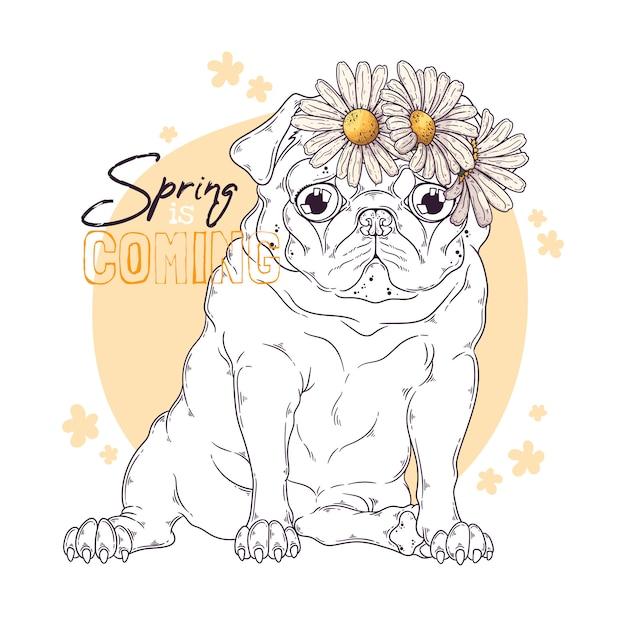 Hand getekende illustratie van de mopshond met bloemen Premium Vector