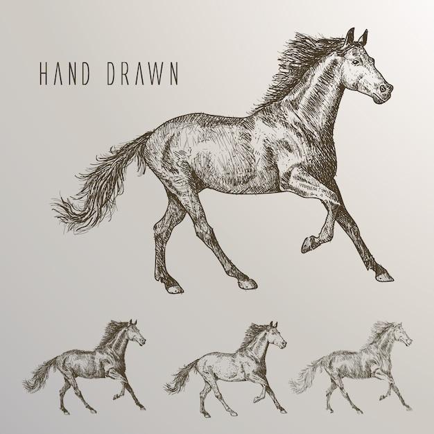 Hand getekende paarden collectie Gratis Vector