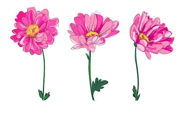 Hand getrokken bloemen, mooie decoratieve bloem, element voor ontwerp, schets. Premium Vector