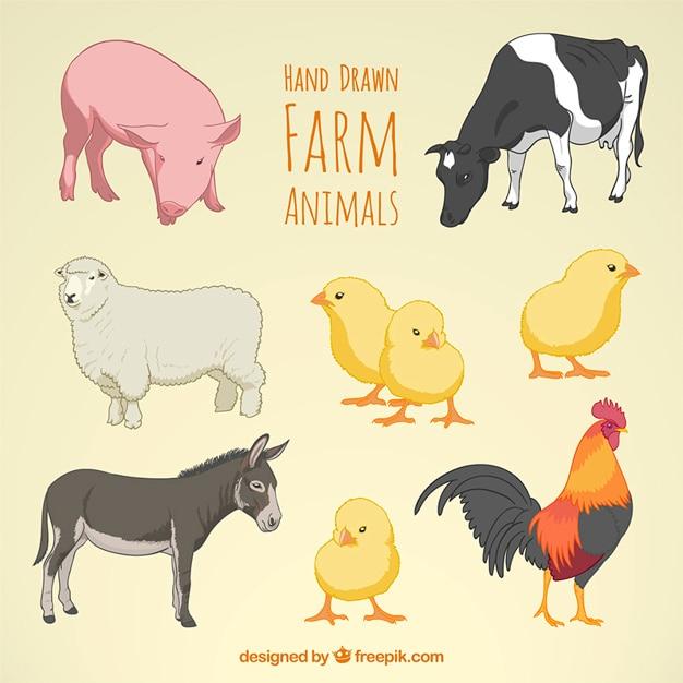 Hand getrokken boerderijdieren Gratis Vector