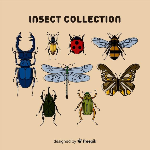 Hand getrokken bugs collectie Gratis Vector