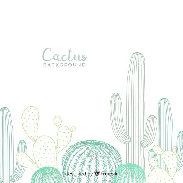 Hand getrokken cactus achtergrond Gratis Vector