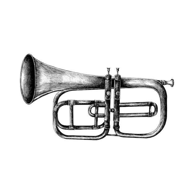 Hand getrokken die trompet op witte achtergrond wordt geïsoleerd Gratis Vector