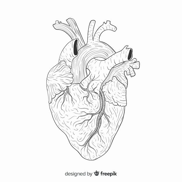 Hand getrokken hart achtergrond Gratis Vector