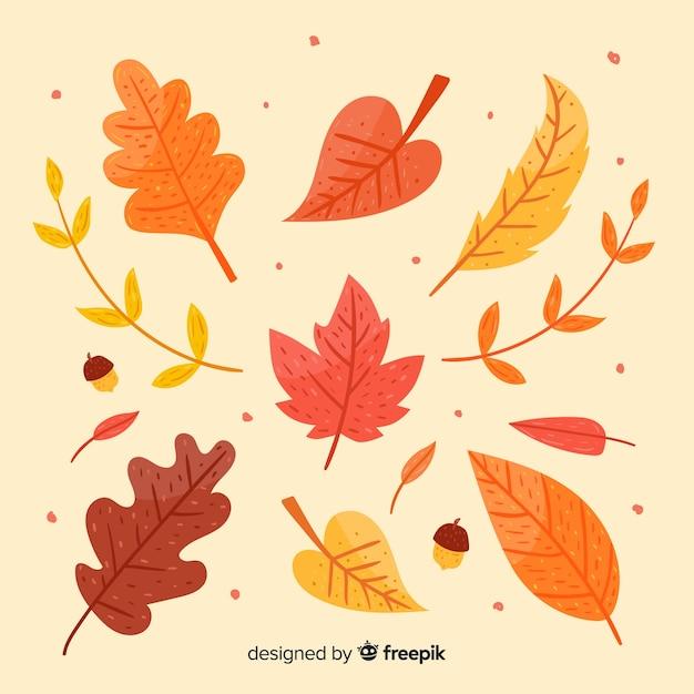 Hand getrokken herfstbladeren collectie Gratis Vector