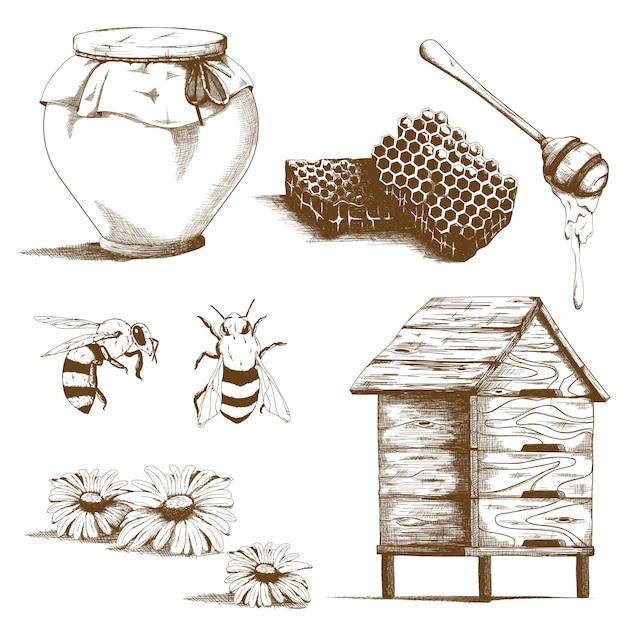 Hand getrokken honing schetselementen Gratis Vector