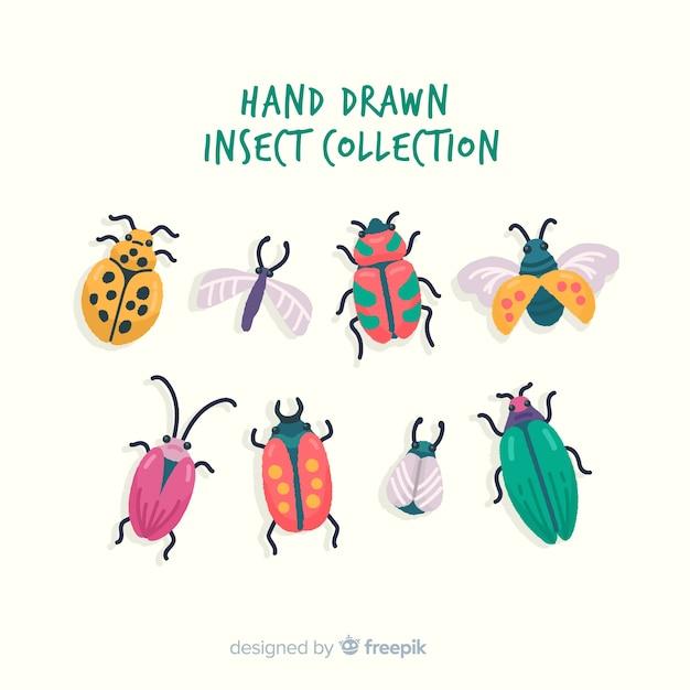 Hand getrokken insectencollectie Gratis Vector