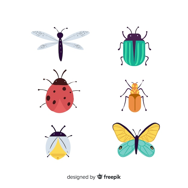 Hand getrokken kleurrijke bug collectie Gratis Vector