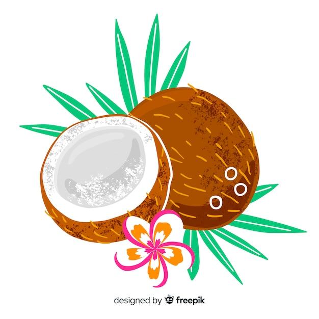 Hand getrokken kokosnoot achtergrond Gratis Vector