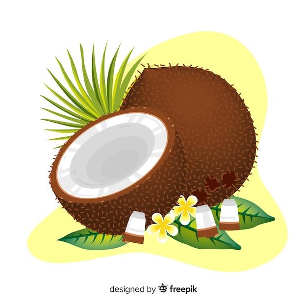 Hand getrokken kokosnootillustratie Gratis Vector