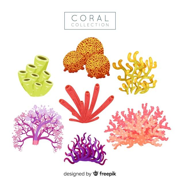 Hand getrokken koraal collectie Gratis Vector