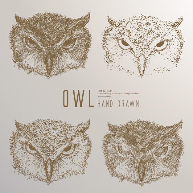 Hand getrokken owl hoofd. Premium Vector