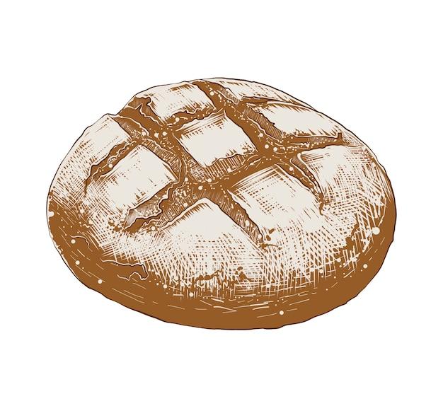 Hand getrokken schets van brood brood in kleurrijke Premium Vector